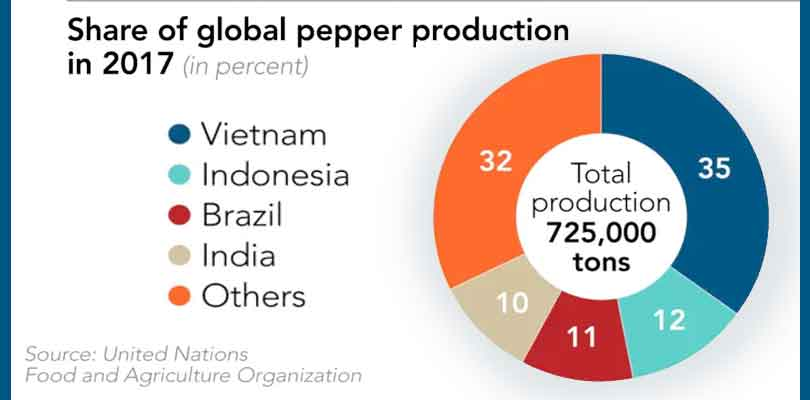 Black pepper prices drop significantly | Investopress